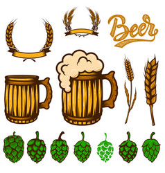 set of beer design elements wheat spikelets beer vector image