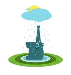 Funny Graphic Elephant and Rain vector image