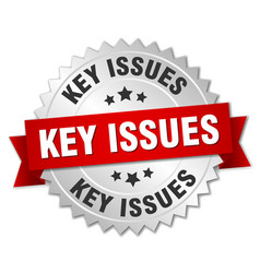 key issues round isolated silver badge vector image vector image