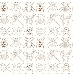 Seamless pattern with doodle sketch Bugs and vector image vector image