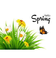 nature spring background with grass flowers and vector image