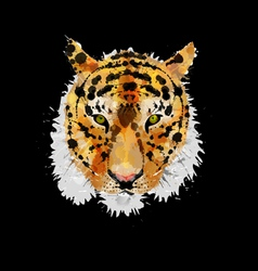 Tiger head made of colorful splashes vector image