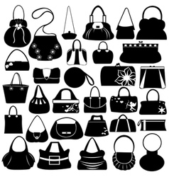 female purse set vector image vector image