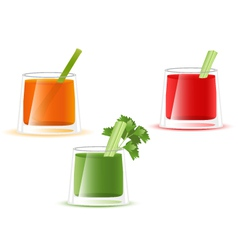 Juice glass of vegetable vector image vector image