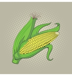 Ear of corn pop art retro vector image