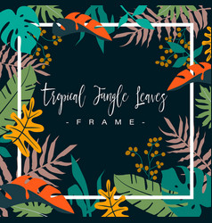 frame colorful tropical jungle leaves on dark vector image