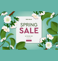 spring sale floral banner with blooming cherry vector image
