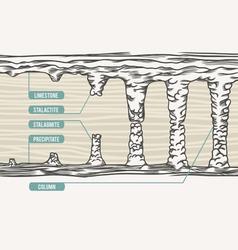 Stalactite stalagmite colum vector