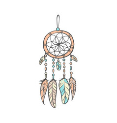 stylish dream catcher with feathers in soft colors vector image