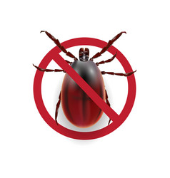 warning sign harvest bug on a white background vector image
