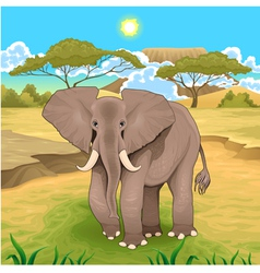 African landscape with elephant vector
