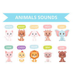 Animals sounds zoo birds cats dogs farm vector