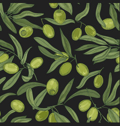 botanical seamless pattern with olive tree vector image
