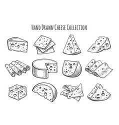 Cheese sketch set vector