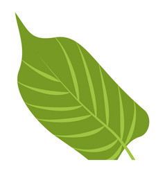 paradise leaf icon cartoon style vector image