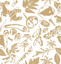 Seamless background with spices vector