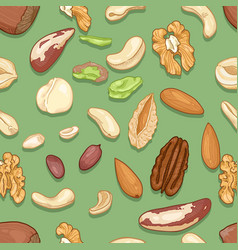 Seamless pattern different nuts vector