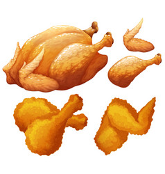 set of food made by chicken vector image