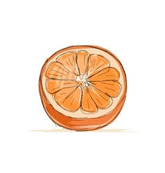 Sketch of orange for your design vector image
