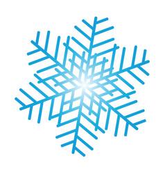 snowflake ornate vector image