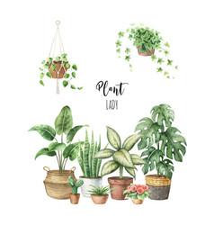 Watercolour indoor plants in ceramic pots vector