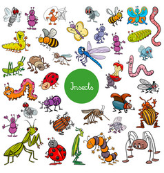 cartoon insects animal characters big set vector image vector image