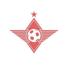Football ball with wings logo soccer mockup emblem vector image vector image