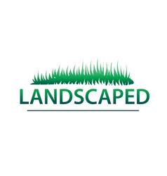 landscaped vector image