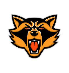 Angry raccoon head mascot vector