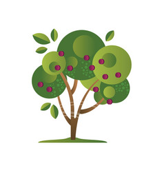 Green tree with plums garden plant with ripe vector