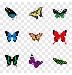 Set of butterfly realistic symbols with beauty fly vector