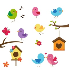 Cute birds Design elements set vector image vector image