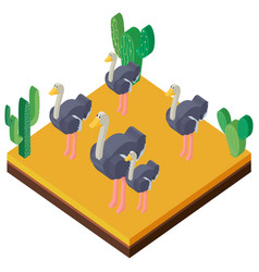 desert scene with ostriches in 3d design vector image