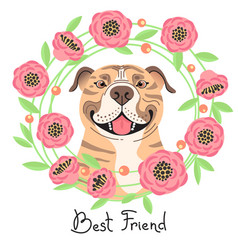 Happy american staffordshire pit bull terrier vector
