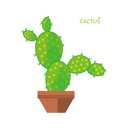 isolated cactus doodle style vector image