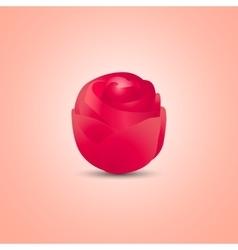 Roza vector image