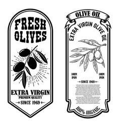 set of vintage olive oil flyer templates design vector image
