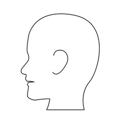 silhouette head human man medical vector image