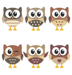 set of cute brown owls isolated on white vector image vector image