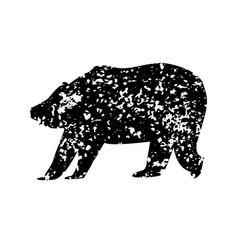 Bear texture vector