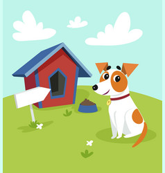 Cute jack russell terrier dog sitting in front of vector