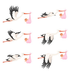 flying stork frame animation bird delivery vector image