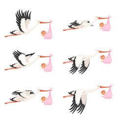 Flying stork frame animation bird delivery vector