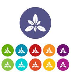 Leaf icons set color vector