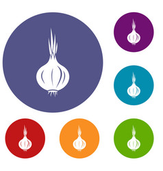Onion icons set vector