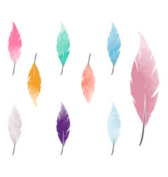 watercolor feathers set on white background vector image