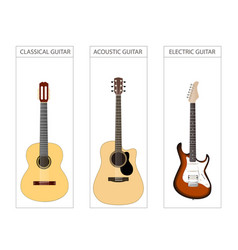 acoustic electric and classical guitar set vector image