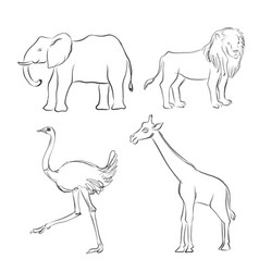 cartoon sketch of animals vector image