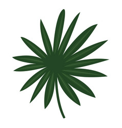 fan palm leaf icon cartoon style vector image