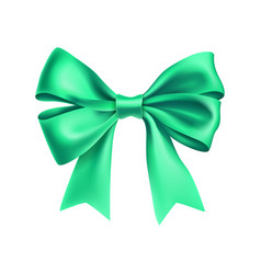 Romantic mint ribbon bow isolated on white vector